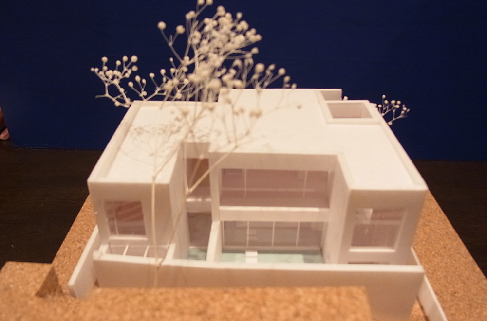 A HOUSE WITH THE WATER DECK: Construction modeling