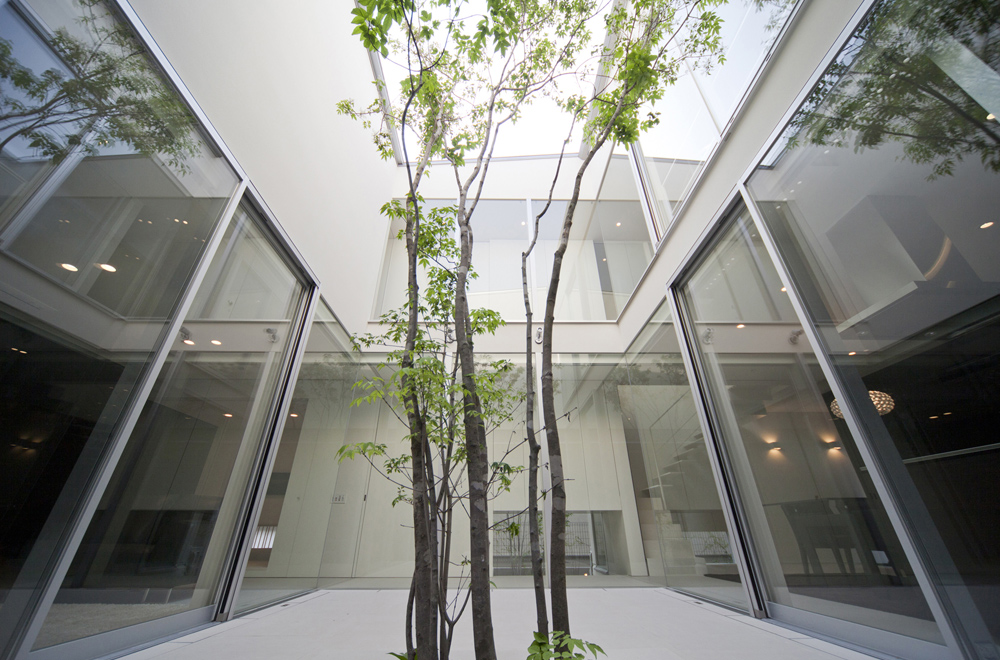HOUSE WITH A COURTYARD FOSTER FOUR SEASONS: Symbol tree