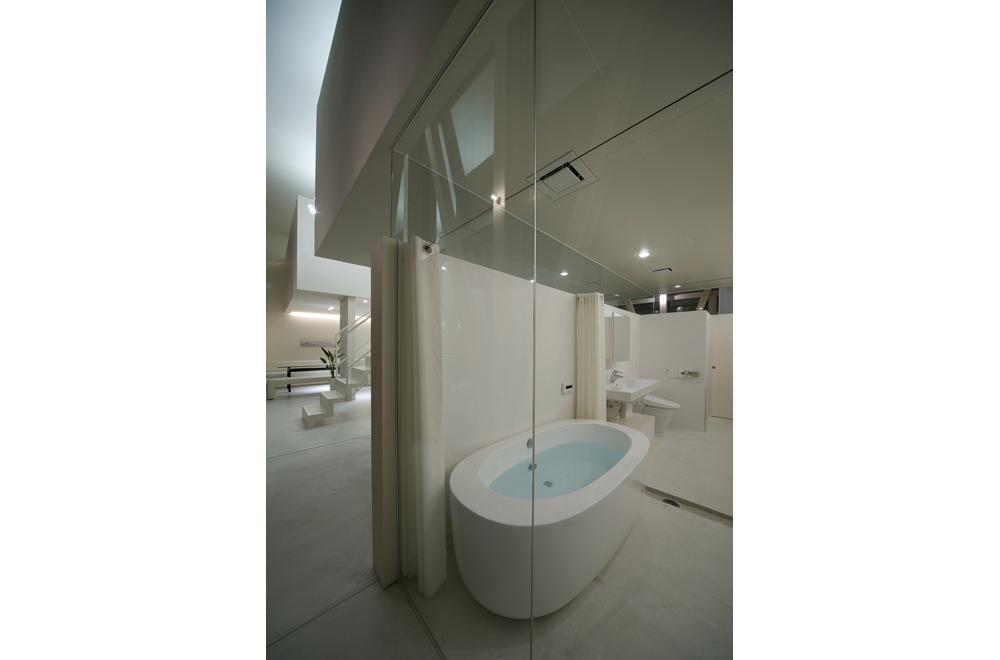 GREEN HOUSE: Bathroom