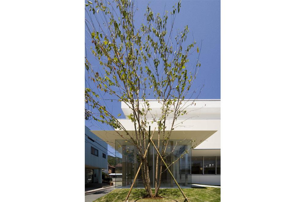 HAGIHARA CLINIC: Symbol tree