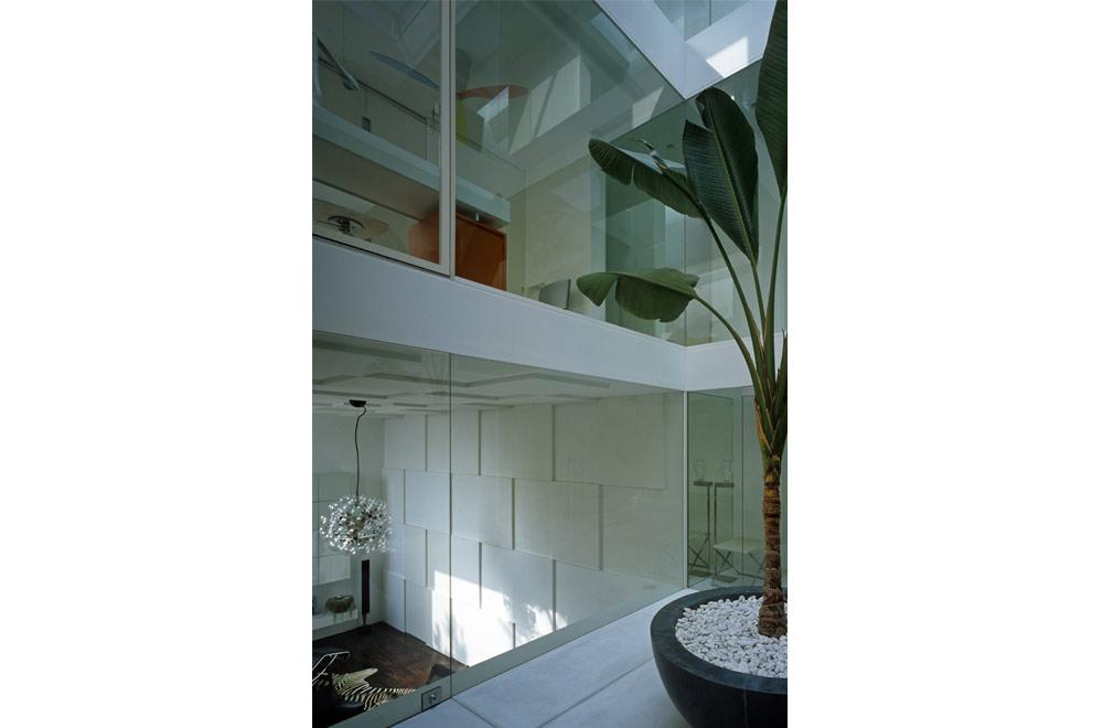 HOUSE IN MUKOYAMA: Symbol tree