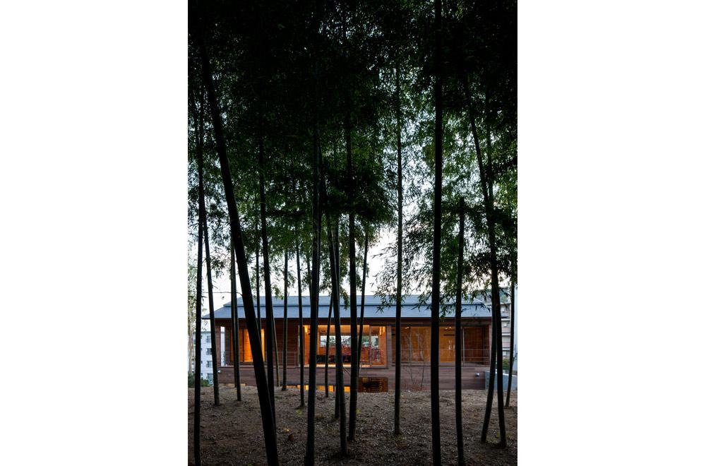 KANCHIKUSOU: Scenery of bamboo