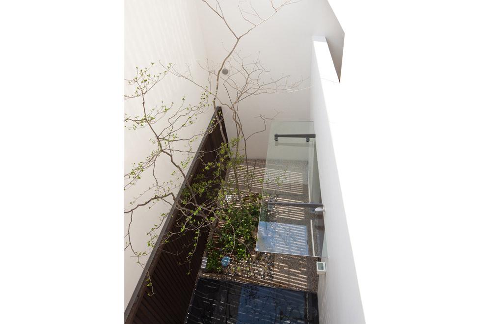 HOUSE WITH PUBLIC GARDEN: Courtyard