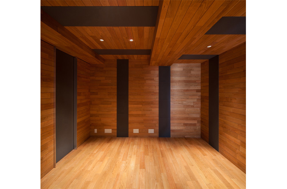 HOUSE WITH PUBLIC GARDEN: Audio room