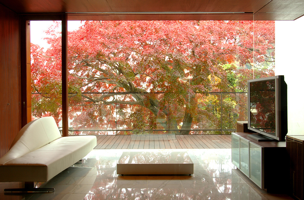 HOUSE WITH MAPLE TREE: Living room