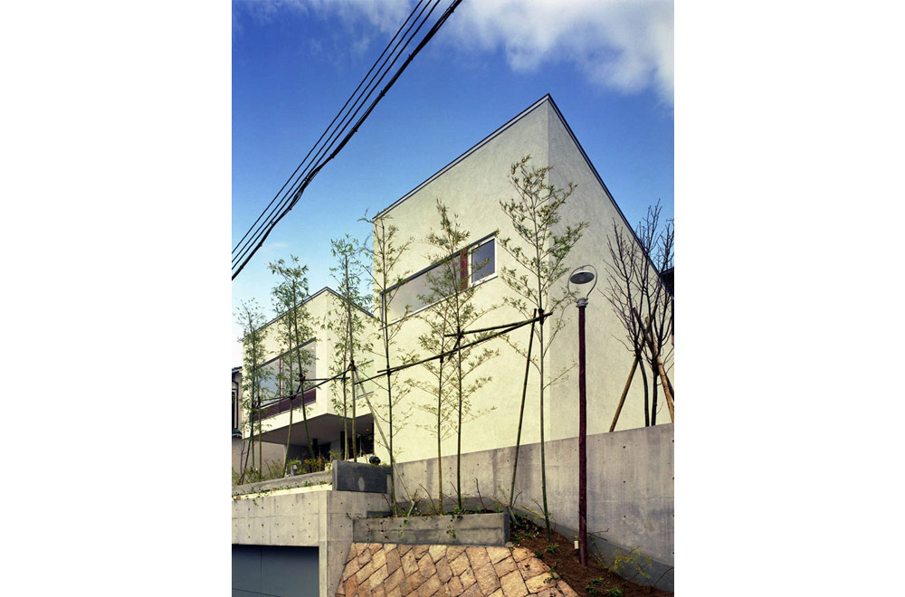 HOUSE IN MOTOYAMA: Appearance