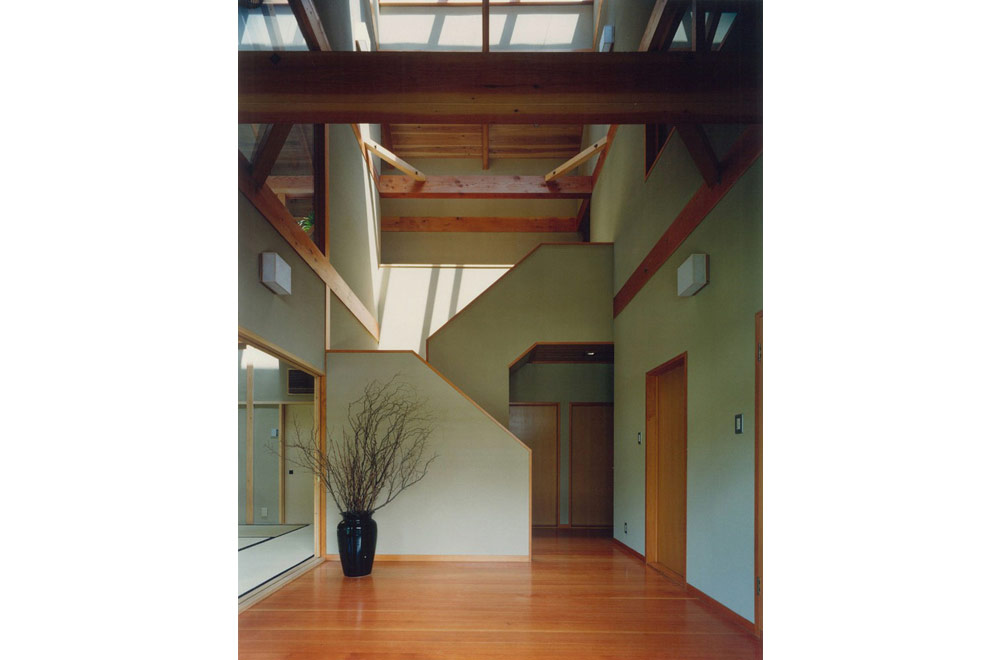 LARGE ROOF HOUSE: Entrance hall