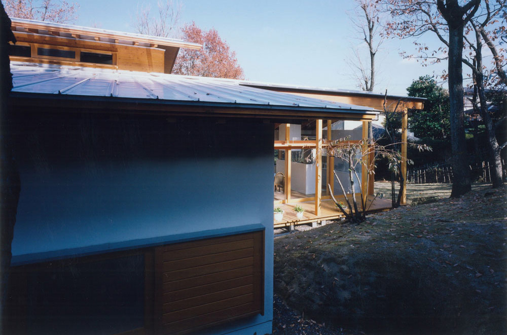 HOUSE IN IZU: Appearance