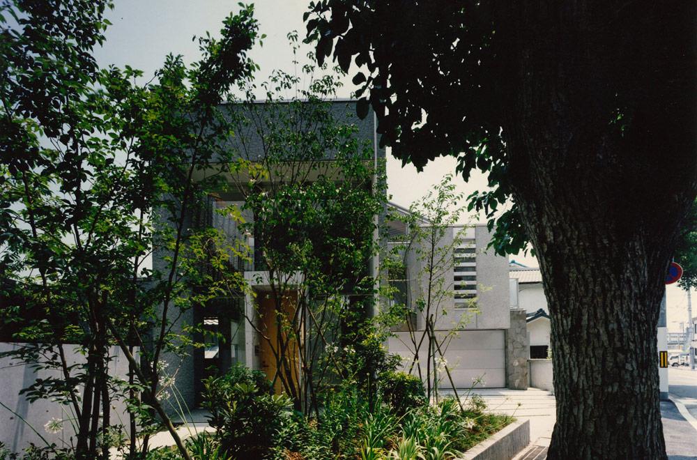 Y-HOUSE: Garden